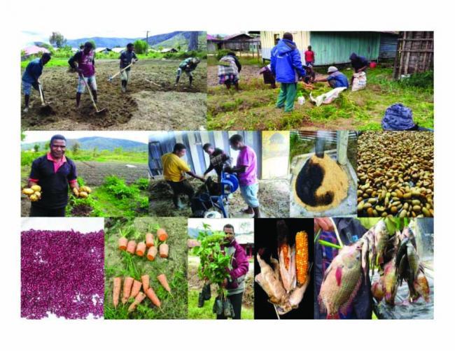 Membangun reseliensi di tingkat komunitas (Foto: Bentara Papua)
