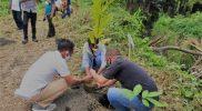 Penanaman bersama yang dilakukan di tepi sungai Kali Upa Tobelo Selatan Halmahera Utara