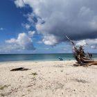 Pantai Pulau Pagama yang masuk dalam kawasan konservasi kepulauan Sula