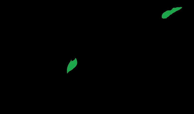 Logo WALHI