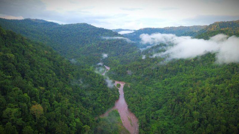 Sebagian hutan Halmahera tepatnya di kawasan Taman Nasional Ake Tajawe Lolobata yang masih terlindungi, foto Opan Jacky