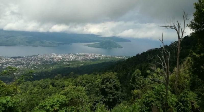 hutan cengkih di Ternate